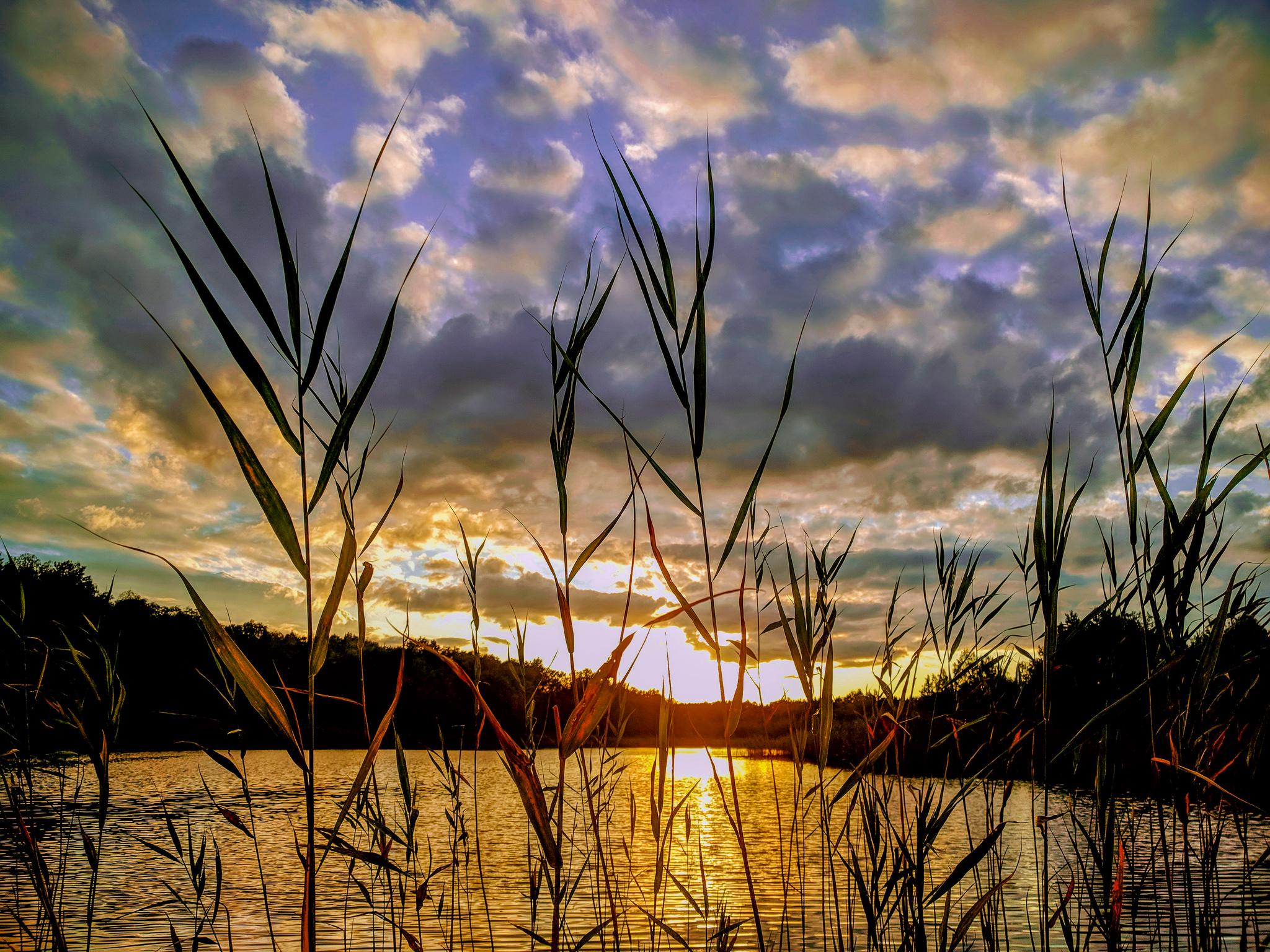 Jezioro Czarne w Markach.
