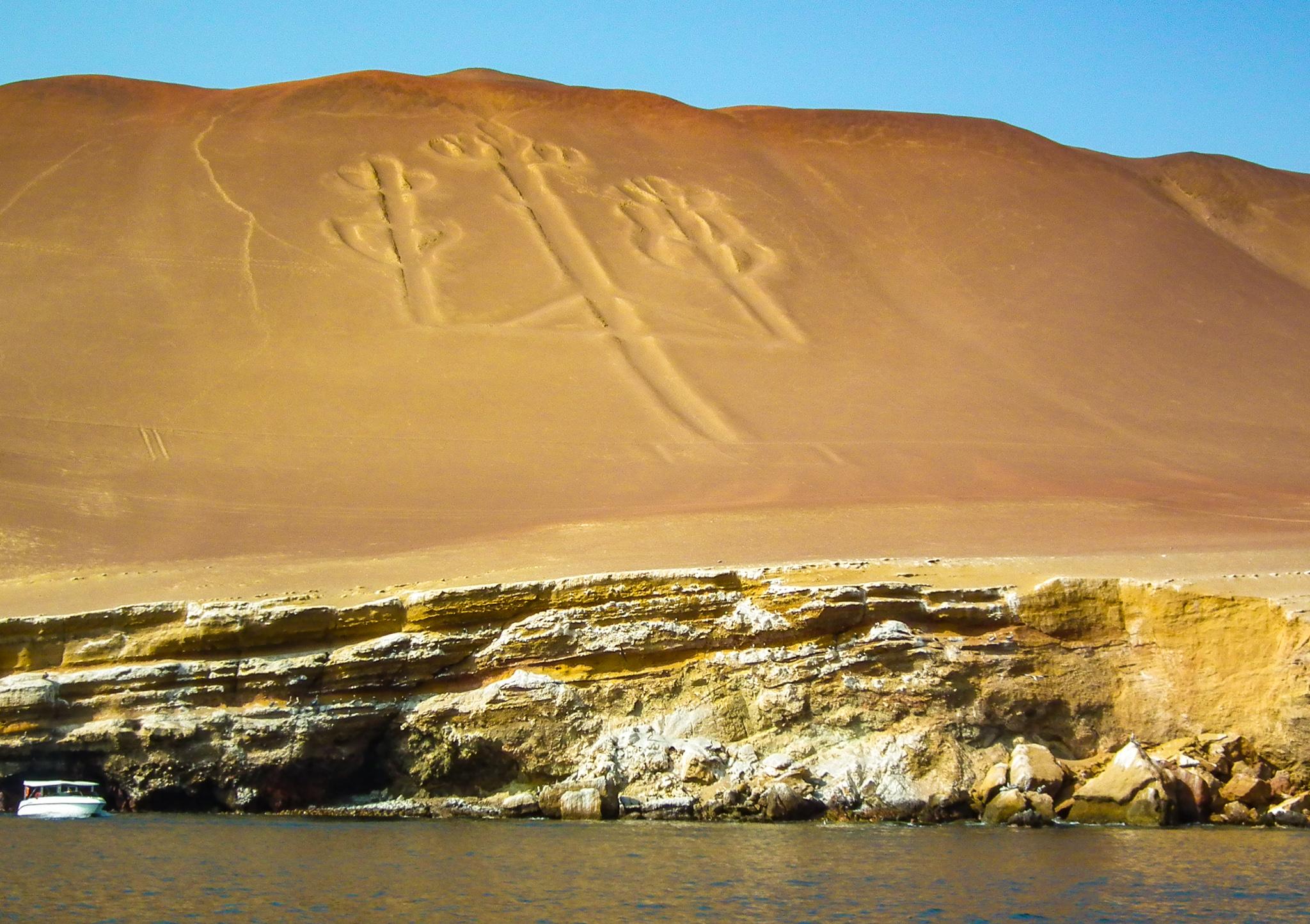 półwysep Paracas kaktus