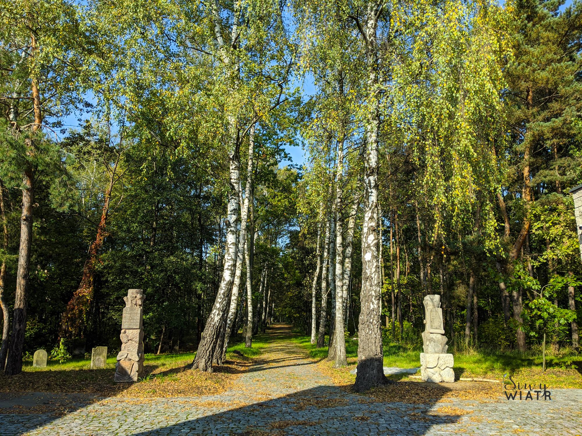 warszawskie cmentarze